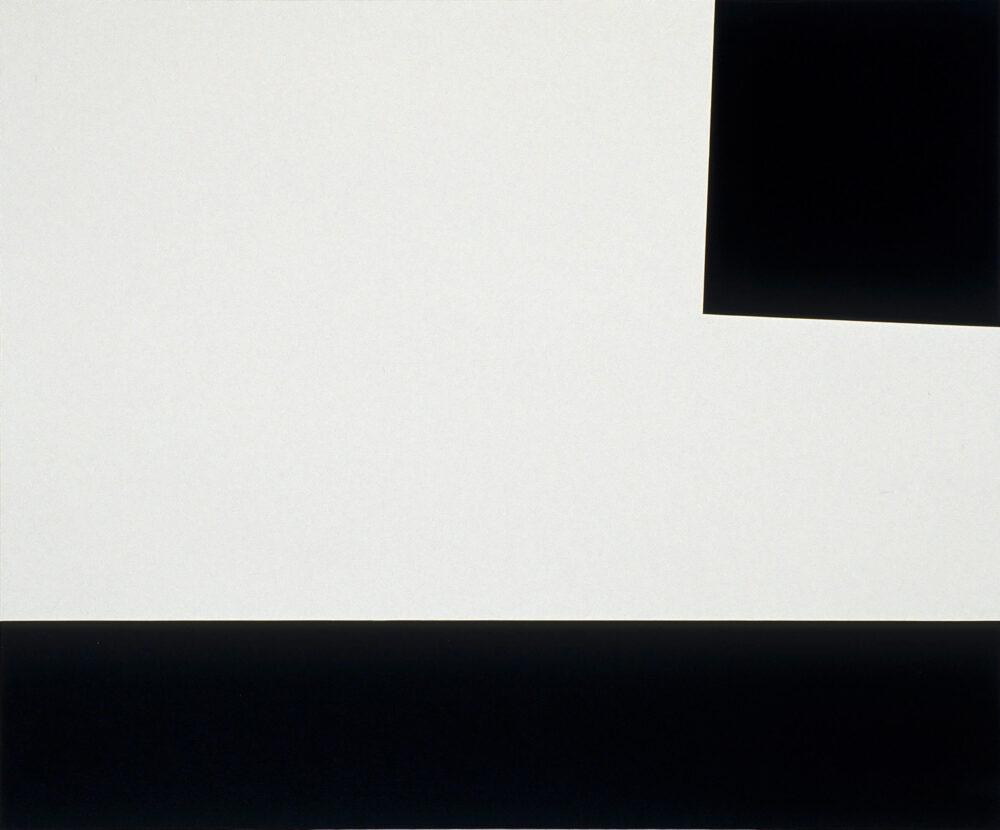 Molinari blanc dominant -2